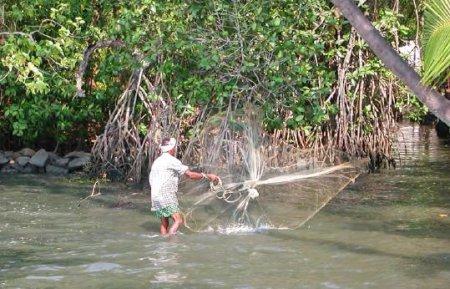 Cast fishing off Cochin