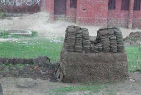 Drying cow patties