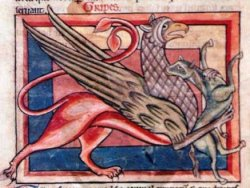 Medieval view of a griffin