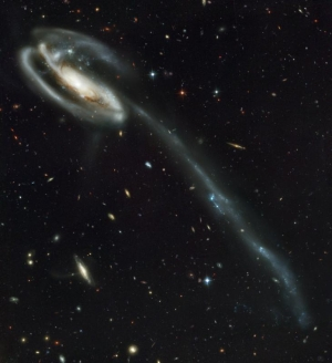 A long galactic tail