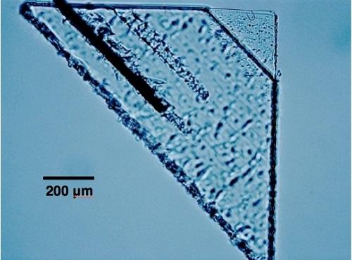 micrograph-of-sorok-picokeystone_2