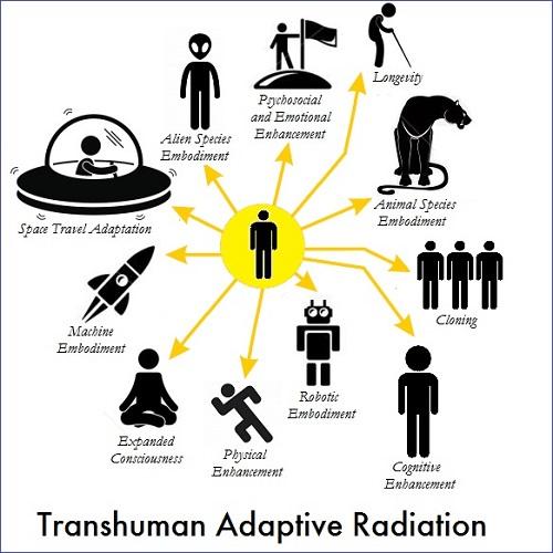 transhuman-adaptive-radiation-2