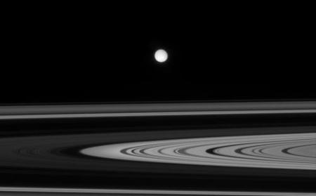 Enceladus and the Rings