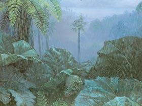 dinosaur-images-014-resize